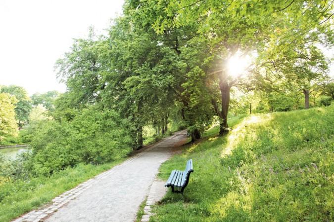 Der Volkspark Wilmersdorf dominiert den Kiez und macht ihn besonders lebenswert. @ Project Immobilien Wohnen AG