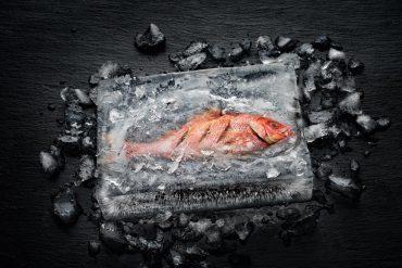 Effektvoll und exemplarisch für die revolutionären Zubereitungsmöglichkeiten im Dialoggarer ist der Fisch im Eisblock: Der Fisch ist im Eis gegart, ohne dass der umgebende Eismantel geschmolzen wäre. © Miele