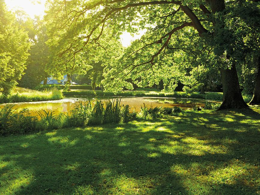 Ziegert Am Schlosspark Impressionen 02