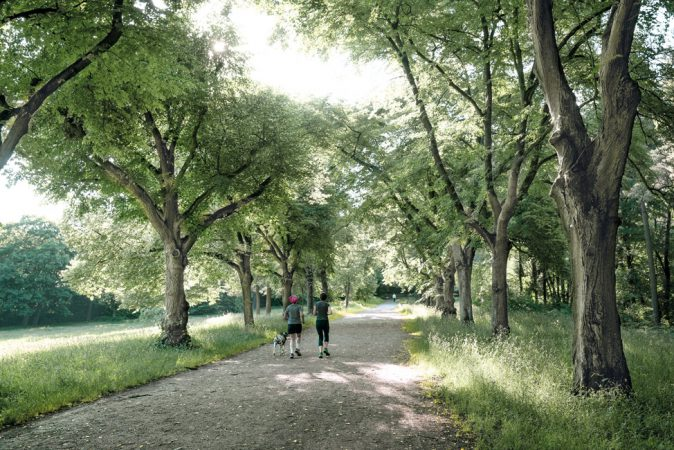 Joggen, Spielen oder Entspannen – Auf 35 Hektar erwartet Sie mit der Schönholzer Heide eine Naturoase, wie sie in Pankow kein zweites Mal zu finden ist. © PROJECT Immobilien Wohnen AG