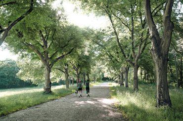 Project Schönholzer Heide thumb