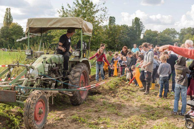 Kartoffelfest - Domäne Dahlem  • Foto: juergend2 • Lizenz: CC BY-ND 2.0