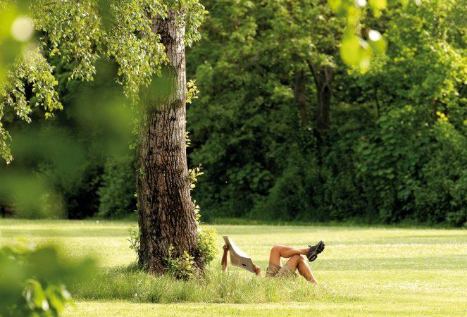 Im Südwesten Berlins gelegen, bildet Zehlendorf eine grüne Oase mit zahlreichen Parks. © PROJECT Immobilien Wohnen AG