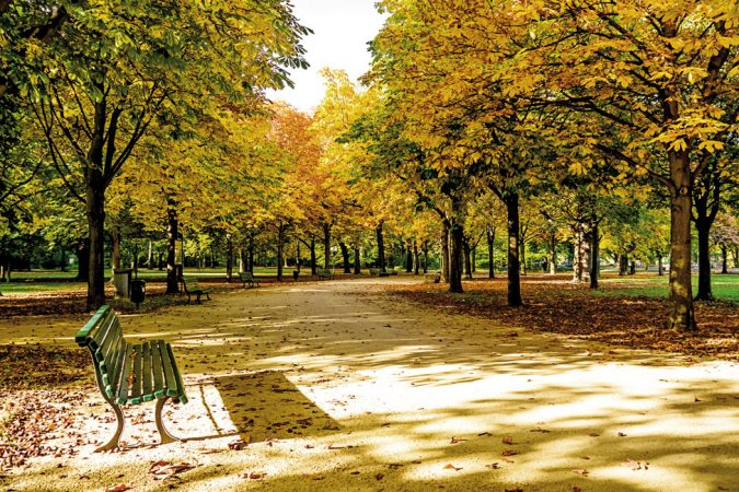 Großer Tiergarten © iStock / GT Development GmbH