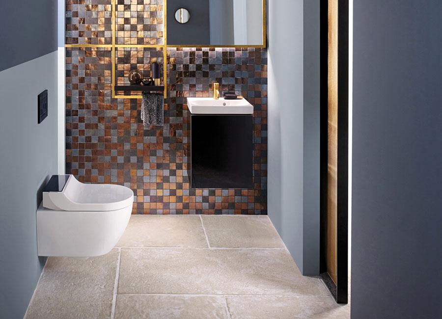 Badeinrichtung-Dusch-WC 10 Essentials  für die Badeinrichtung