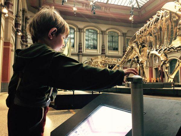 Das Naturkundemuseum gehört bei Kindern zu den Berlin-Highlights © SW/EXKLUSIV