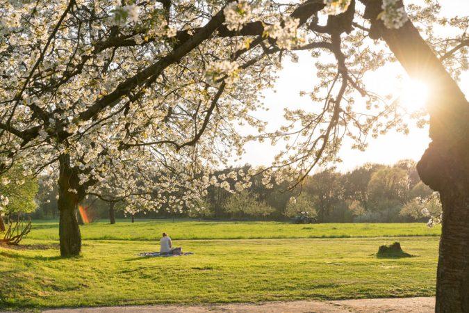 Botanischer Volkspark © PROJECT Immobilien Wohnen AG