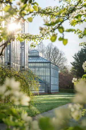 Gewächshaus im Botanischen Volkspark © PROJECT Immobilien Wohnen AG