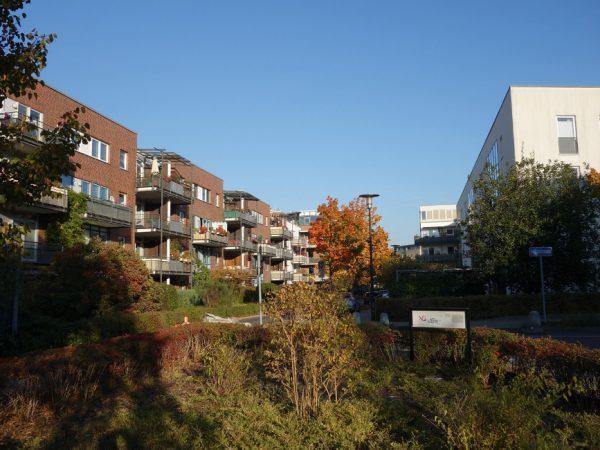 Wohngebiet auf der Halbinsel Straße Am Krusenick © Michael T. Schmidt / isoarts.com
