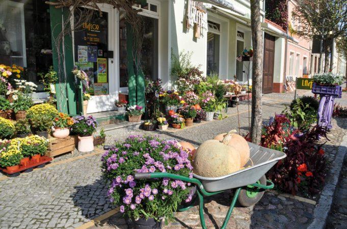 Blumenladen Altstadt Beelitz © Michael Helm / pixelio.de
