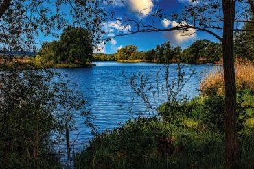 Natur Wasser Havel
