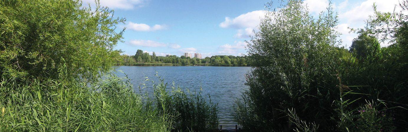 © Assenmacher, Berlin-Falkenhagener-Feld Panorama Großer Spektesee, CC BY-SA 3.0