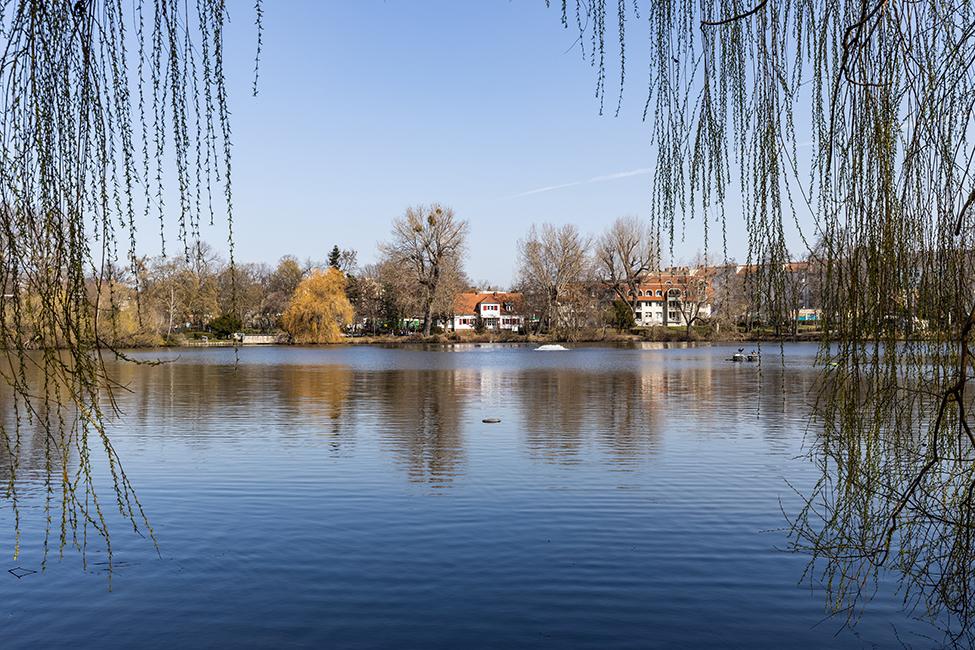 ein Blick auf den See © Ziegert EverEstate GmbH
